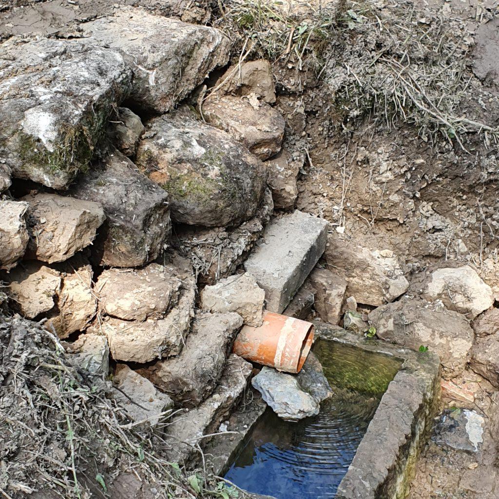 Einrichtung zusätzlicher Trog zum Schutz von Salamander-Larven.